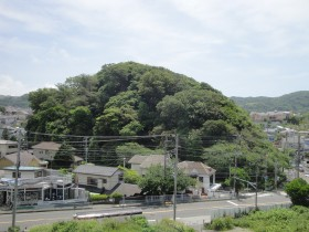 20110522 葉山緑地 002