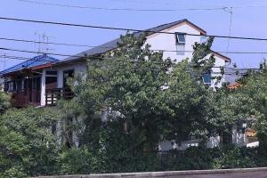 大黒柱のある家